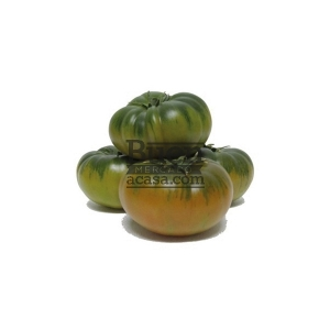 Tomate Delizia 1,00 kg
