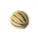 Melón Cantaloop