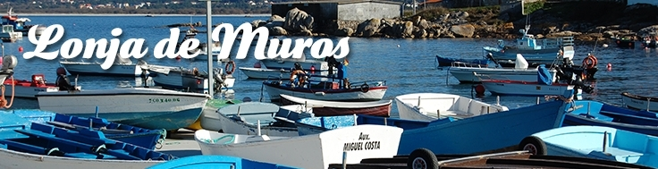 LONJA DE MUROS (GALICIA)
